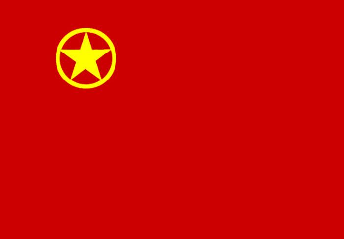 团旗1.jpg