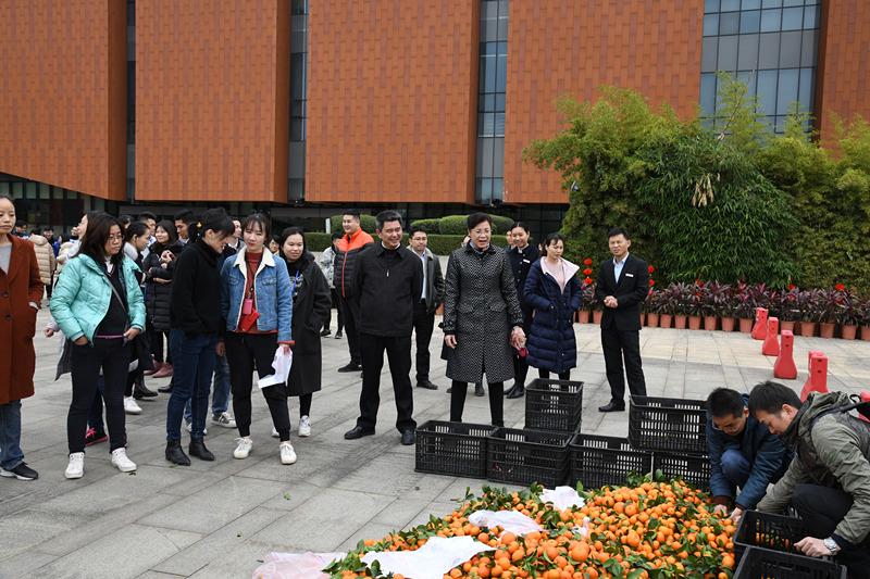 旅发集团举办2020年新春游园活动